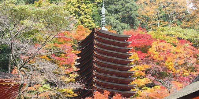 奈良県でもジュエリーやアクセサリーを作りたい!そんな人達の為のページです。彫金教室からアクセサリースクール・ジュエリー専門学校まで幅広くジュエリー